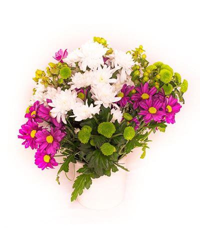 Снимка от Букет от хризантеми  - Цветна магия