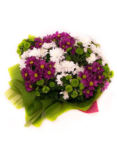 Снимка от Букет от хризантеми - Цветно приятелство