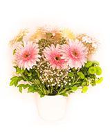 Снимка от Ваза с гербери и хризантеми - Нежна хармония