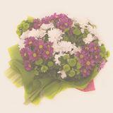 Снимка на производител Букети от хризантеми