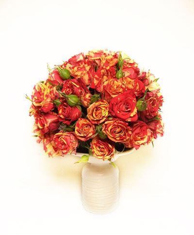 Снимка от Ваза от мини рози - Пленителна