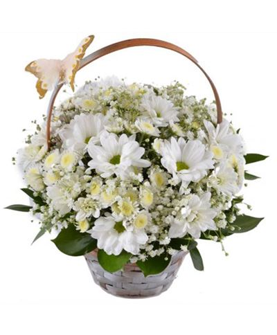 Снимка от Кошница с цветя - Красива хризантема