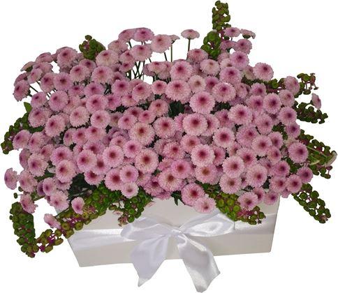 Снимка от Букет с рози и хризантеми Усмивка